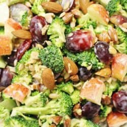 Fruit and Nut Broccoli Salad – $.58 per serving