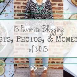 15 Favorite Blogging Posts, Photos, & Moments of 2015