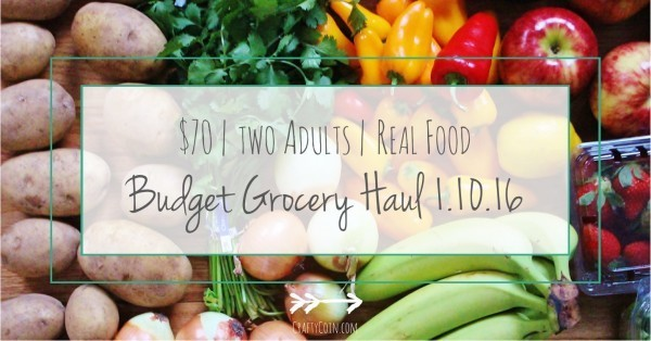 Budget Grocery Haul 1.10.16