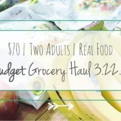 Budget Grocery Haul // Week of 3.23.16