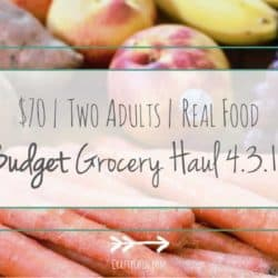 Budget Grocery Haul // Week of 4.3.16