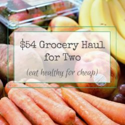 Healthy Grocery Haul // Week of 5.1.16