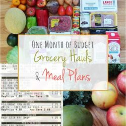 One Month of Budget Grocery Hauls & Meals Plans – May 2016